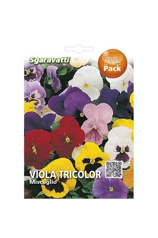 Semi di viola tricolor miscuglio