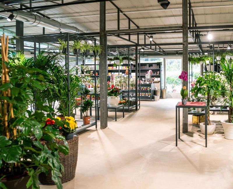 City-Garden-Horticultural.jpg