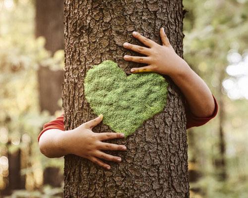 Ecosostenibilita_-Horticultural.jpg