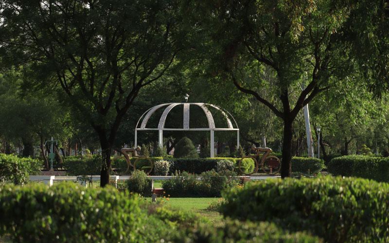 Servizi-Giardino-Horticultural.jpg